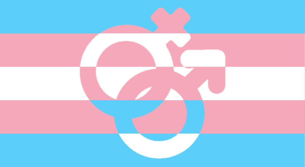 接納不等如鼓勵——社會應如何對待跨性別人士
